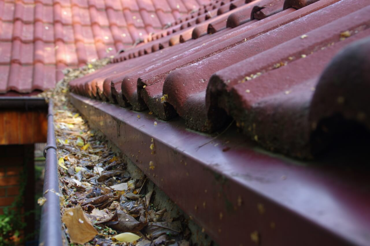 gutter cleaning is essential for a healthy home